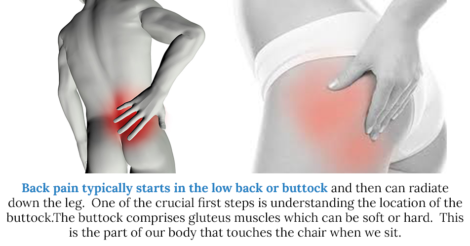 Back pain typically starts in the low back or buttock and then can radiate down the leg. One of the crucial first steps is understanding the location of the buttock. The buttock is comprised of gluteus muscles which can be soft or hard. This is the part of our body that touches the chair when we sit.